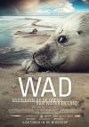 Wad: overleven op de grens van water en land